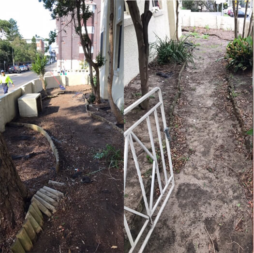 before landscaping and maintenance